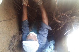 sewage tank cleaning cost
